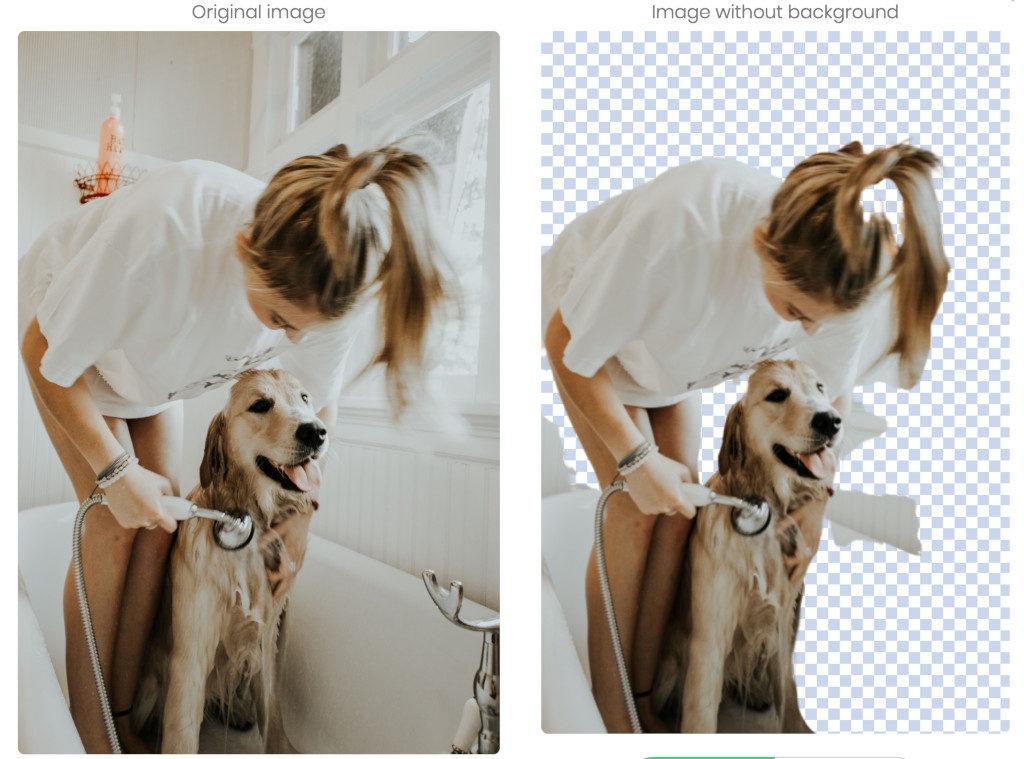narzędzie do usuwania tła zdjęcia